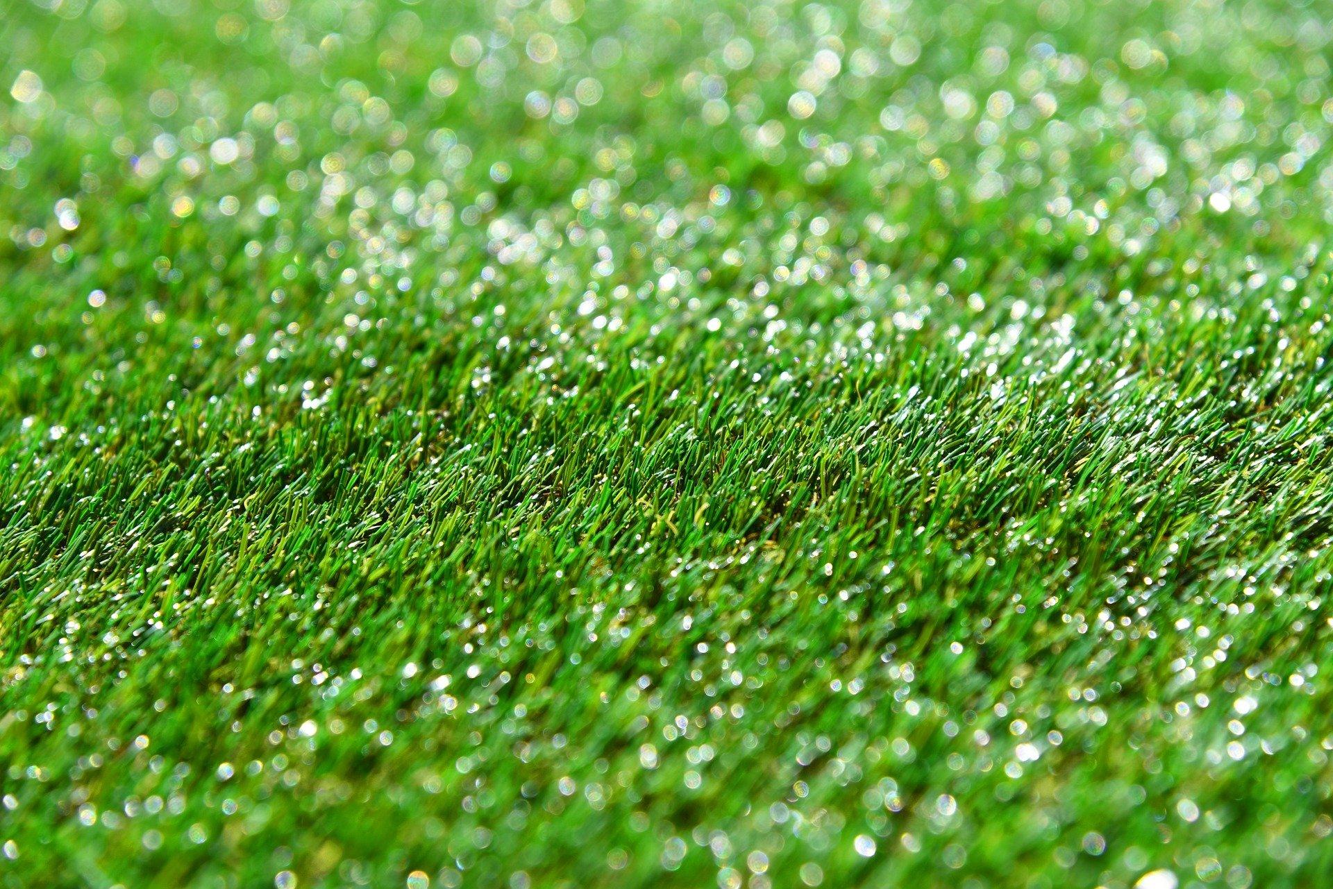 tappeto erboso fitoprotezione matozzo giardini
